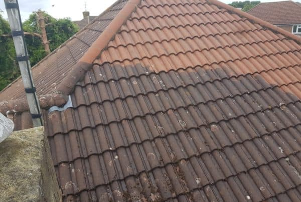 Roof Cleaning Company Bedfordshire